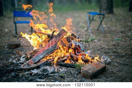 It lit a fire in the wood in summer