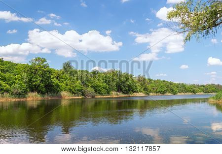 Spring Landscape Of The River In A Forest
