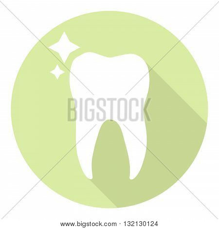 Molar Tooth Healthy And Shiny Dental Icon