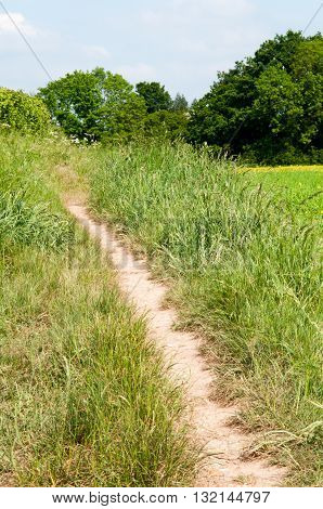 wide angle view of a country footpath through a field