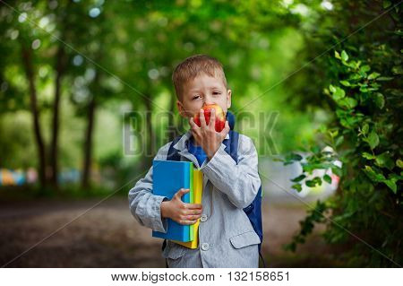 Funny little boy with books and backpack eating apple on green nature background. Back to school concept