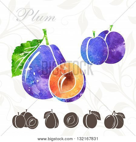 Plum icons set. Plum illustration with watercolor texture
