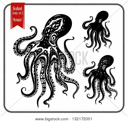Octopus. Various type of octopuses. Graphic stencil style vector octopuses isolated on white background.