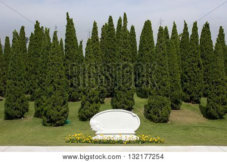 Pine Tree Decoration With Blank White Signboard In The Park
