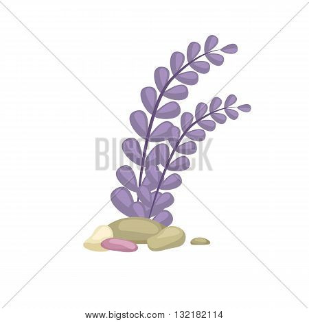 Seaweed, solated colorful corals and algae on a white background. Vector underwater flora and fauna.