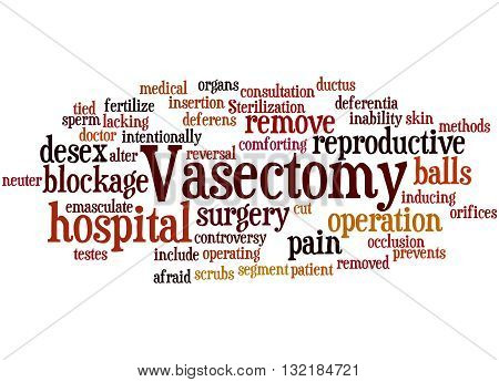 Vasectomy, Word Cloud Concept 7