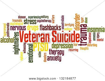 Veteran Suicide, Word Cloud Concept