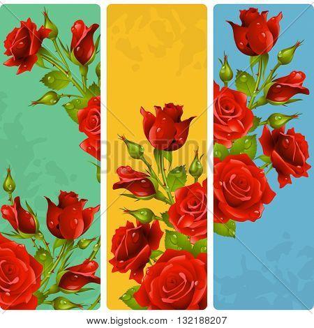 Red Rose frames. Vector set of floral vertical banners