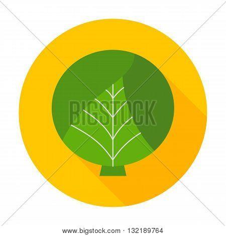 Cabbage Flat Circle Icon