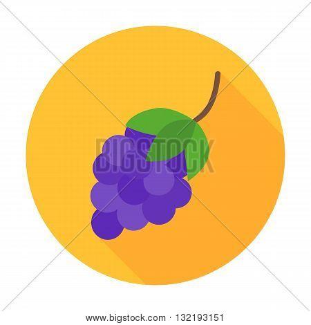 Grapes Flat Circle Icon