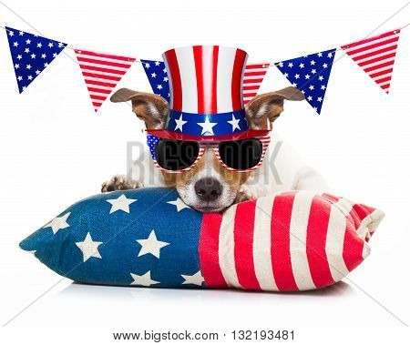 4Th Of July Independence Day Dog