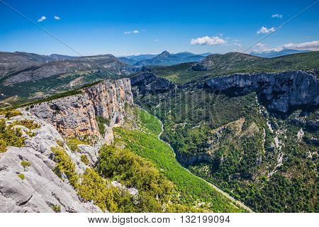 Magnificent May in the wooded mountains. Canyon of Verdon, Provence, France.