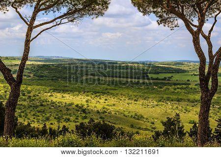 Springtime . Alta Murgia National Park: panoramic view. - (Apulia) ITALY-