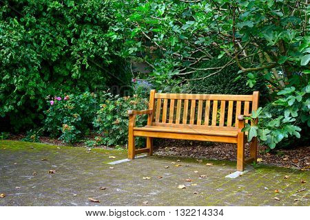 Wooden bench in beautiful park