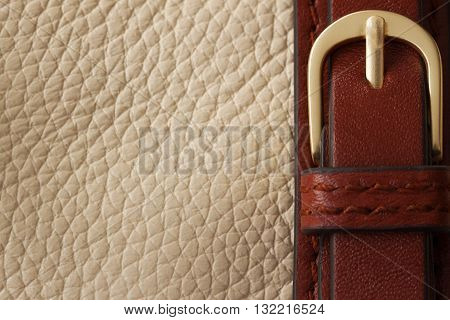 Detail of beige handbag and buckle with space for your text