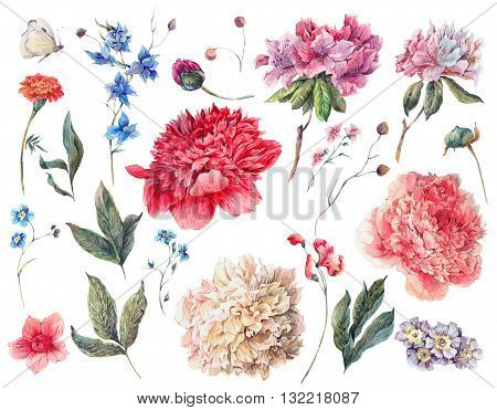 Set of watercolor white pink red peonies and garden flowers separate flower leaf sprigs isolated watercolor illustration on white. Natural summer design floral elements