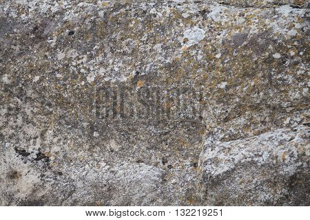 stone texture background surface abstract backdrop natural