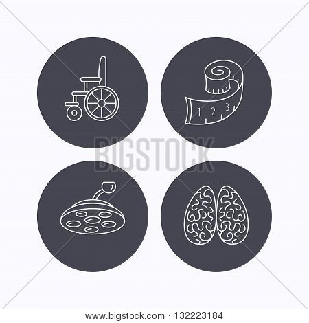Wheelchair, neurology and weight loss icons. Surgical lamp linear sign. Flat icons in circle buttons on white background. Vector