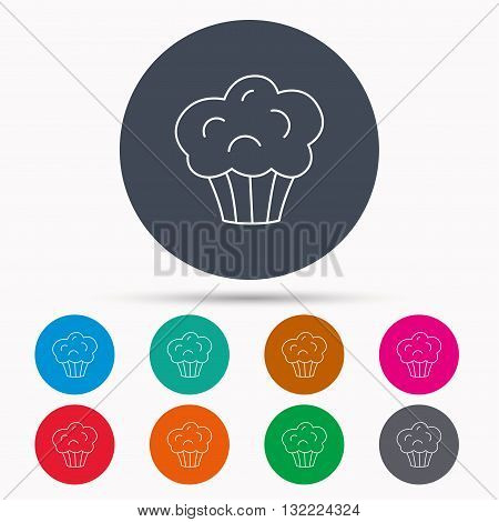 Muffin icon. Cupcake dessert sign. Bakery sweet food symbol. Icons in colour circle buttons. Vector