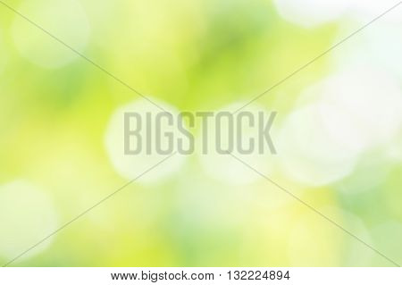 Blurred summer background with sun glare close up