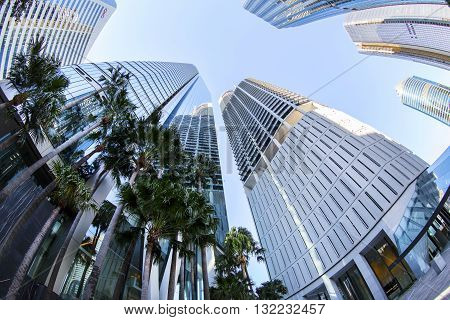 BRISBANE, AUSTRALIA - MAY 25 2016: Fisheye view looking up at Brisbane cityscape on Eagle Street