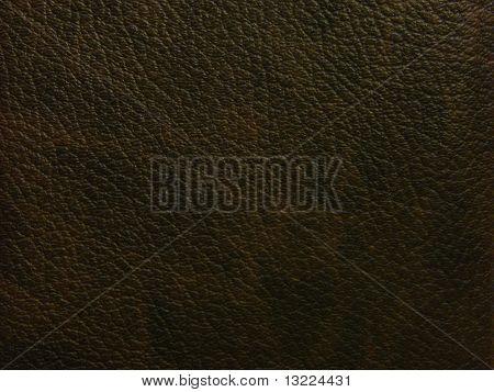 Dark Brown Skin, The Texture