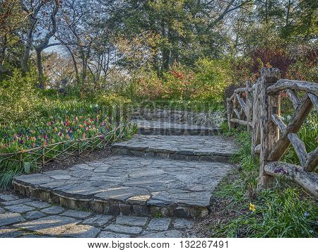 Central Park New York City Shakespeare Garden