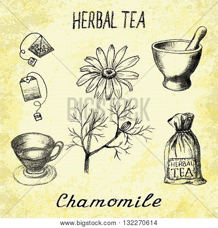 Chamomile herbal tea. Set of vector elements on the basis hand pencil drawings. Herb chamomile tea bag mortar and pestle textile bag cup. For labeling packaging printed products