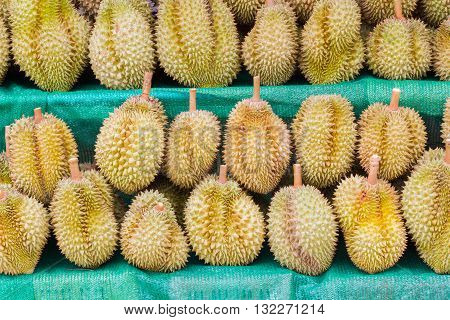 Durian King of Fruit for selling in Thailand.