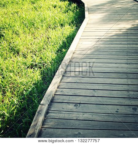 Wooden path in a spring park. Aged photo. Footpath photo with copy space area. Wooden pathway in the forest. Outdoors. Toned photo.