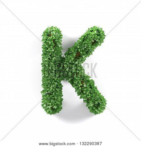 Green Leaves K Ecology Letter Alphabet Font