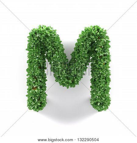 Green Leaves M Ecology Letter Alphabet Font
