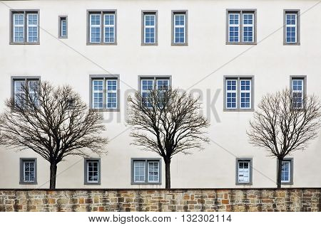 LEONBERG, GERMANY - APRIL 6, 2015: Detail of medieval castle facade. Trees without leaves against a white wall with different windows. Leonberg Baden-Wurttemberg Germany.