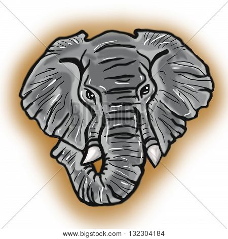 Head of african Elephant hand drawn colorful illustration realistic