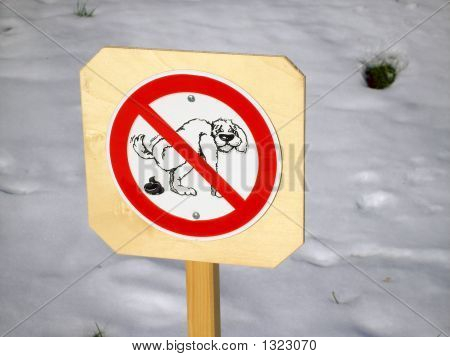 Dog Poop Not Allowed
