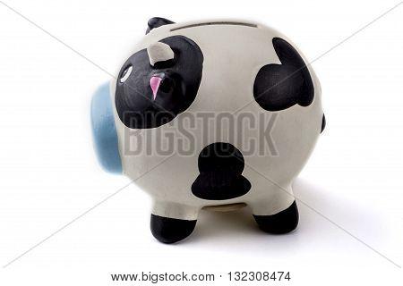 Piggy Bank Cow