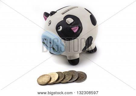 Piggy Bank Is A Cow