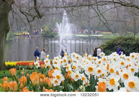 dutch garden in spring