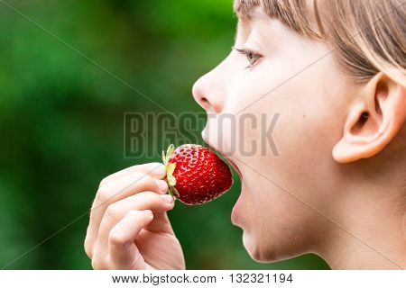 Child Eating Fresh Red Strawberry