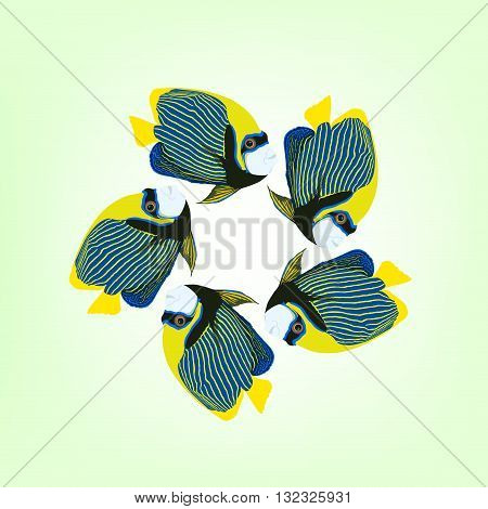 Vector illustration of five swimming fishes. Emperor angelfish. Pomacanthus imperator fish.