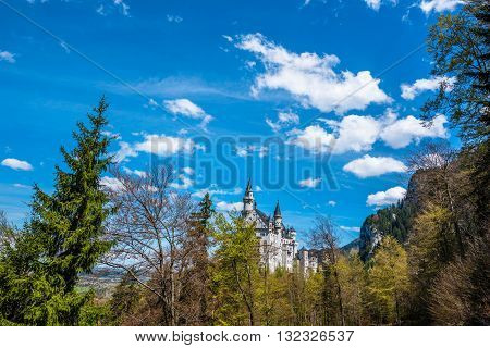 Scenic View from Neuschwanstein Castle - Germany