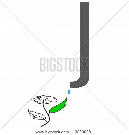 Flower and drain pipe . watering and growing flowers