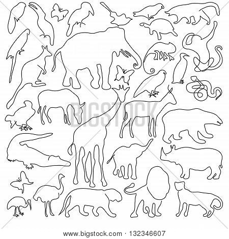 The collection of animals on a white background