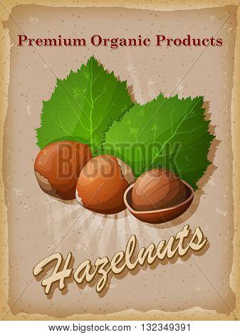 Hazelnuts vintage poster. Vector illustration. EPS 10