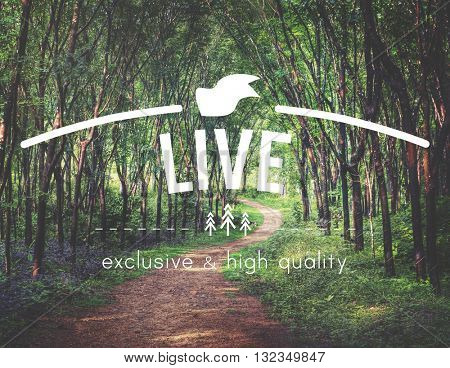 Explore Life Earth Green Environment Concept