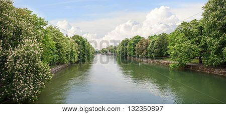 Riverside Of Isar River Munich, With Blooming Chestnut Trees