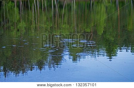 Waterdrop splashing on lake and trees are reflection in the water.