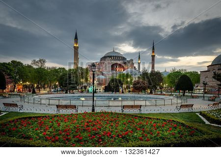 Hagia Sophia is seen behind tulips and fountain at Sultanahmet Square in Istanbul Turkey