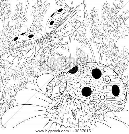 Zentangle stylized cartoon flying ladybugs and daisy flowers. Hand drawn sketch for adult antistress coloring page T-shirt emblem logo or tattoo with doodle zentangle floral design elements.