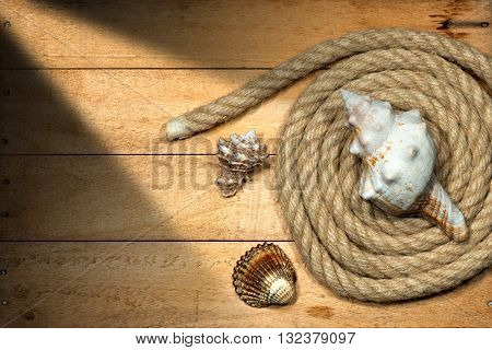 Nautical rope coiled with three seashells on a wooden background with nails and shadows